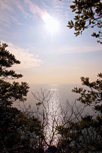 森の中から眺む空と海